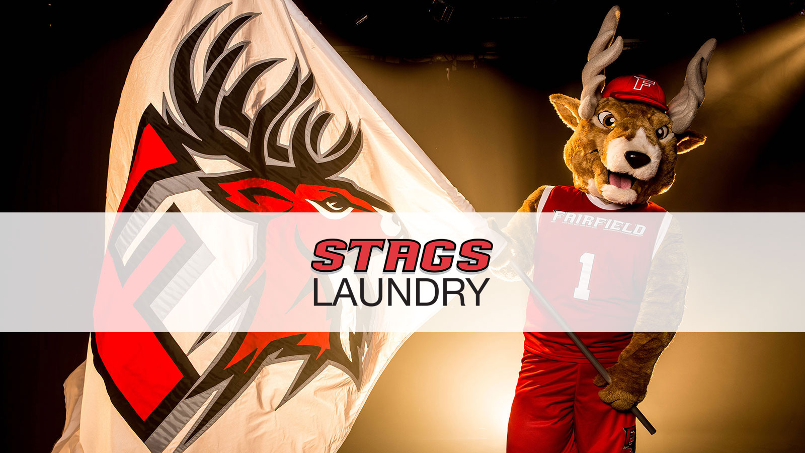 Image of Lucas the Stag holding a Fairfield University flag—overlayed with 'Stags Laundry' text banner